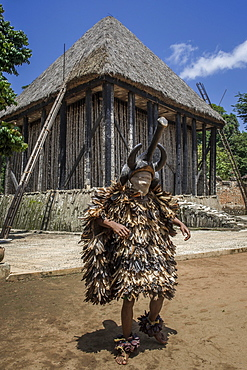 Dancer in traditional clothing wearing carved mask, Atchum, Fon's Palace, Bafut, Bamenda, North-West Region, Cameroon, Africa