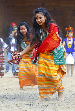 Tribal ritual dance at the Hornbill Festival, Kohima, Nagaland, India, Asia