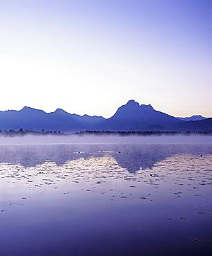 Allgau Alps reflected in Hopfensee lake, Ostallgau, Allgau, Upper Bavaria, Bavaria, Germany, Europe