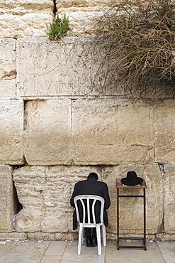 Ultra-orthodox Jew praying at the Western Wall, Wailing Wall, rear view, Jerusalem, Israel, Asia