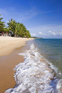 Beach with palm trees, Mae Nam Beach, Ko Samui, Thailand, Asia