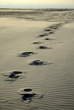 Footprints in the sand, Kniepsand beach, Amrum Island, Nordfriesland, North Frisia, Schleswig-Holstein, Germany, Europe