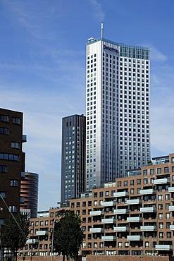 Modern architecture along the Nieuwe Maas River, Spoorweghaven Harbour, Kop van Zuid, Rotterdam, Holland, Nederland, Netherlands, Europe