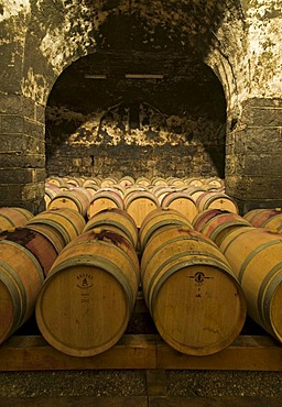 Wine aging in oak barrels in vaulted wine cellar in Bolzano, Bozen, Trentino-Alto Adige, Italy, Europe