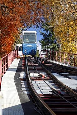 Rigiblick cable car in the autumn, Zuerich, Zurich, Switzerland, Europe