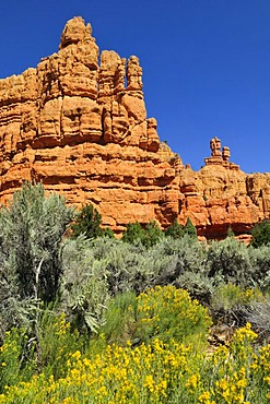 Claron rock formation, Dixie National Forest, Utah, USA, North America