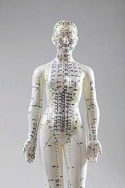 Acupuncture, a female model with marked acupuncture points labeled with Chinese characters on the meridians, traditional Chinese medicine, TCM, the body's energy flow, Qi