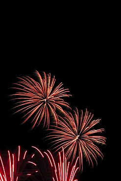 Fireworks display, aerial fireworks display, Brandenburg, Germany, Europe