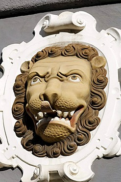 Lion's head with his tongue sticking out, sculptural decoration on a Renaissance facade, Haus zum Stockfisch Museum, Erfurt, Thuringia, Germany, Europe, PublicGround