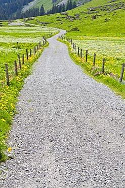 Gravel road, Alpsteingebirge mountains, Canton St. Gallen, Switzerland, Europe