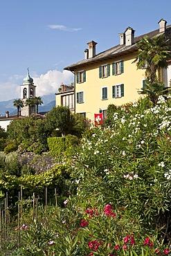 Home in Vira on Lago Maggiore, Swiss flag, Gambarogno, Ticino, Switzerland, Europe