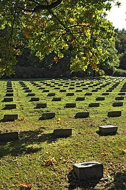 Headstones, Italian military cemetery, Munich, Bavaria, Germany, Europe