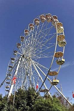 Ferris wheel, 33m high, Serengeti Park amusement park, Lower Saxony, Germany, Europe