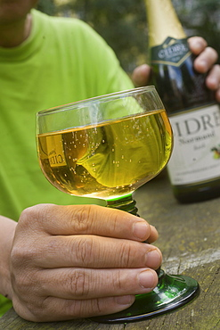 Hand holding a glass of cider