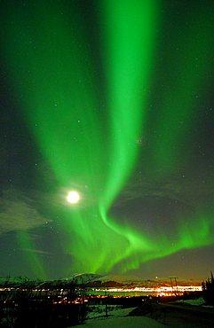 polar lights, Lofoten, Nordland, Norway