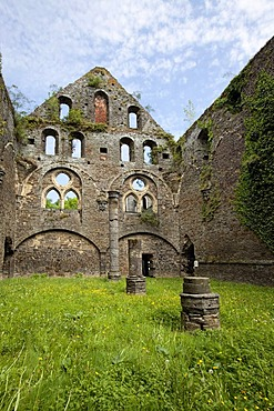 Ruins of the Cistercian Abbey of Villers, Villers-la-Ville, province of Walloon Brabant, Wallonia, Belgium, Europe