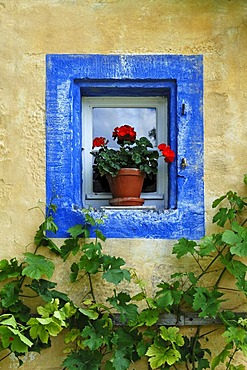 Small window with geraniums and blue border on the Haeckergut farm from the Steigerwaldrand, built in 1717, from Ergersheim, Franconian open-air museum, Eisweiherweg 1, Bad Windsheim, Middle Franconia, Bavaria, Germany, Europe
