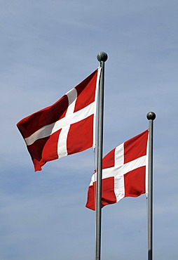 Danish flags, Copenhagen, Denmark, Scandinavia, Europe, PublicGround