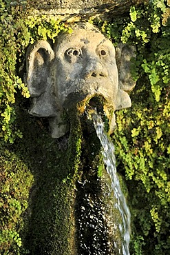 Gargoyle, Viale delle Cento Fontane or Alley of the Hundred Fountains, Garden of the Villa d'Este, UNESCO World Heritage Site, Tivoli, Lazio, Italy, Europe
