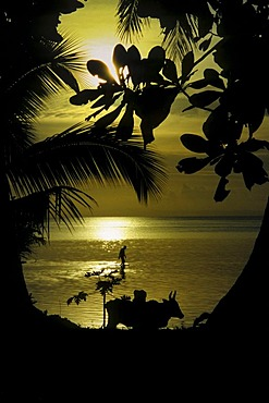 Sunset on the beach of St. Marie in the east of Madagascar, Africa, Indian Ocean