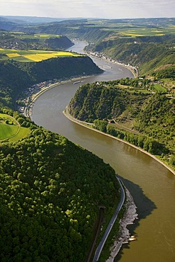 Aerial view, Loreley rock, Oberwesel, Rhine River, low water, Upper Middle Rhine Valley World Heritage site, Rhineland-Palatinate, Germany, Europe