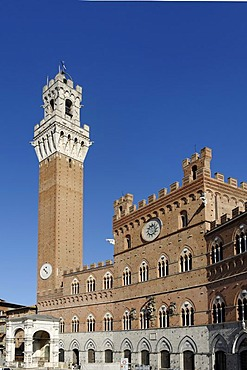 Palazzo Pubblico with the Torre del Mangia, Piazza del Campo, Siena, Tuscany, Italy, Europe