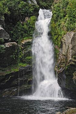 Wainui Falls, waterfall near Pohara, Golden Bay, South Island, New Zealand