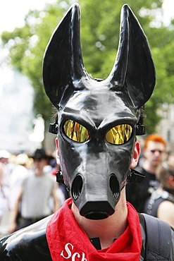 Man wearing a rubber mask, Petplay, BDSM, Christopher Street Day, Cologne, North Rhine-Westphalia, Germany, Europe
