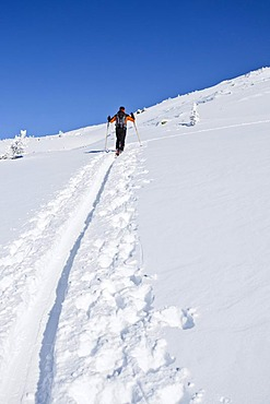 Ascent to Morgenrast Mountain from Unterreinswald, Sarntal Valley, Alto Adige, Italy, Europe