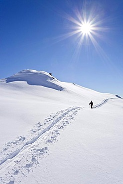 Backcountry skier on the way up to the top of Cima Bocche mountain above Passo Valles mountain pass, Dolomites, province of Trentino, Italy, Europe