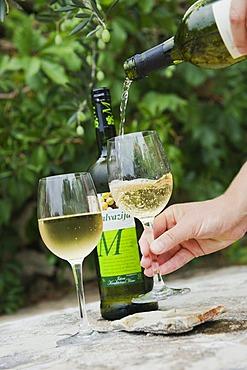 Pouring wine, bottle of white wine and wine glasses, Bol, Brac Island, Dalmatia, Croatia, Europe