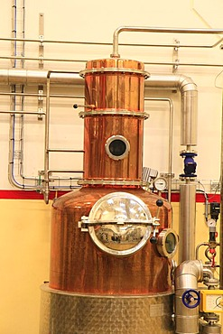 Small distillation unit for trial purposes, Aalborg Akvavit spirits factory, Aalborg, North Jutland, Denmark, Europe