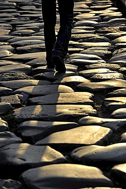 Ancient street paving, Piazza del Colosseo, Rome, Lazio, Italy, Europe