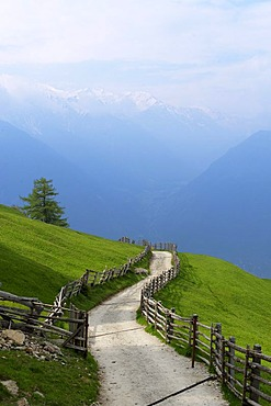 St. Martin im Kofel, Latsch, Vinschgau, Val Venosta, South Tyrol, Italy, Europe