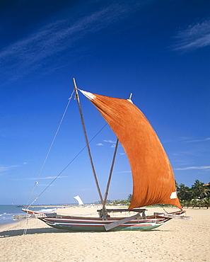 Traditional outrigger fishing boats, Negombo Beach, Negombo, Sri Lanka, Asia