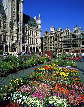 Flower market, Grand Place, UNESCO World Heritage Site, Brussels, Belgium, Europe