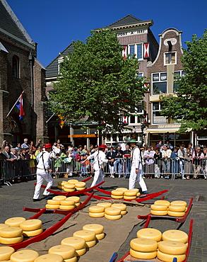 Cheese Market, Alkmaar, Holland (Netherlands), Europe