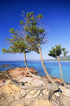 Santa Guilia Beach, Corsica, France, Mediterranean, Europe
