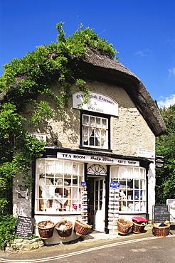 Tea Room and souvenir shop, Godshill Village, Isle of Wight, England, United Kingdom, Europe