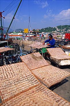 Drying shrimps, Cheung Chau Island, Hong Kong, China, Asia