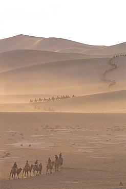 Tourists riding camels at Mount Mingshan, Dunhuang, Gansu Province, China, Asia