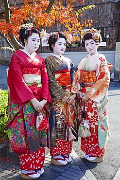 Maiko (apprentice Geisha) dressed in kimonos, Higashiyama, Kyoto, Japan, Asia