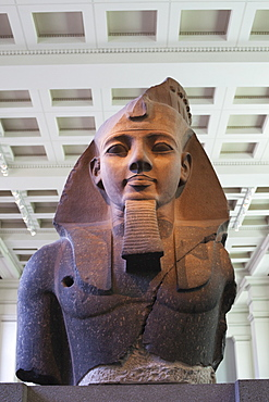 Head of Ramesses II from Thebes dating from 1270 BC, British Museum, Bloomsbury, London, England, United Kingdom, Europe