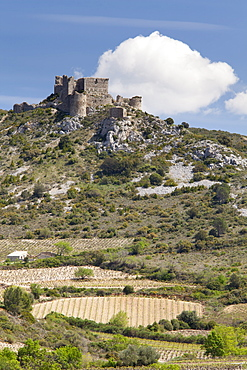 The Cathar castle of Aguilar in Languedoc-Roussillon, France, Europe