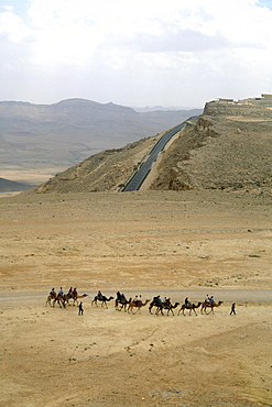 Aerial photograph of a caravan of camels near the modern town of Mitzpe Ramon in the Negev desert, Israel