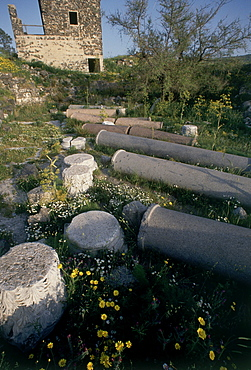 Photograph of the ruins of Gamla on the Golan Heights, Israel