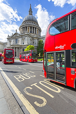 View of St. Paul's Cathedral and London red buses from St. Paul's Churchyard, City of London, London, England, United Kingdom, Europe