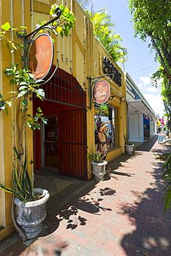 Cigar shop off 8th Street in Little Havana, Miami, Florida, United States of America, North America