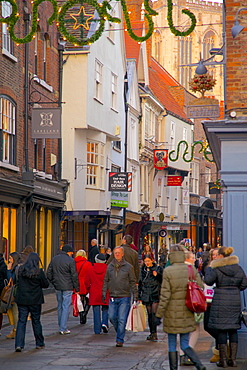 Shops and Minster on Stonegate at Christmas, York, Yorkshire, England, United Kingdom, Europe