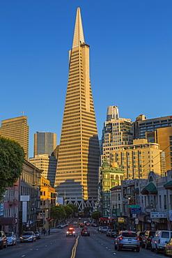 View of Transamerica Pyramid building on Columbus Avenue, North Beach, San Francisco, California, United States of America, North America